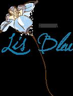 Lis Bleu Pousada, entre as melhores pousadas de Tiradentes.