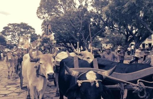 Festival Carro de Boi Tiradentes 2018